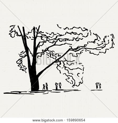 Landscape nature park trees and bushes. Ink traced illustration.