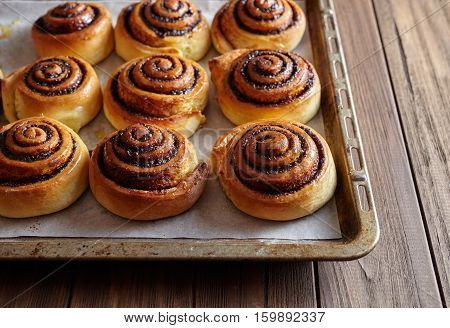Freshly baked cinnamon rolls buns with cocoa and spices on a metal a baking sheet. Christmas pastries. Close-up. Top view.