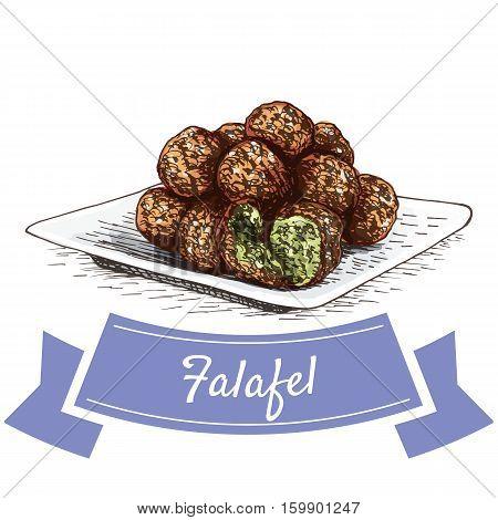 Falafel colorful illustration. Vector illustration of israeli cuisine.