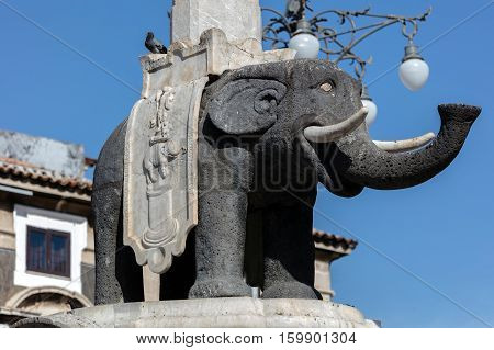Elephant Statue In The Catania Obelisk