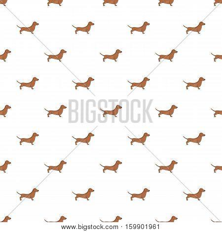 Dachshund dog pattern. Cartoon illustration of dachshund dog vector pattern for web