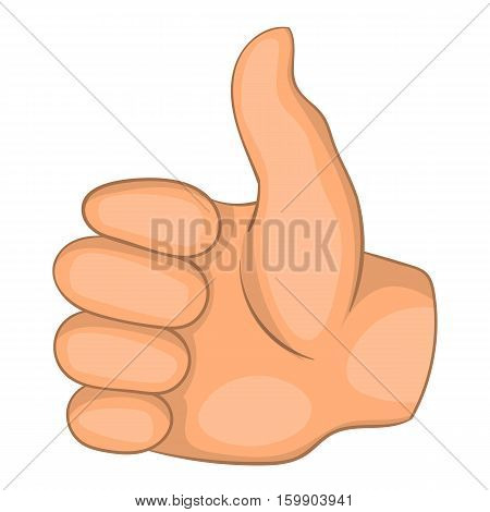 Thumb up icon. Cartoon illustration of thumb up vector icon for web
