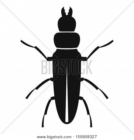 Beetle insect icon. Simple illustration of beetle insect vector icon for web