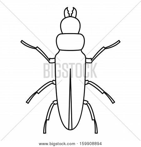Beetle icon. Outline illustration of beetle vector icon for web