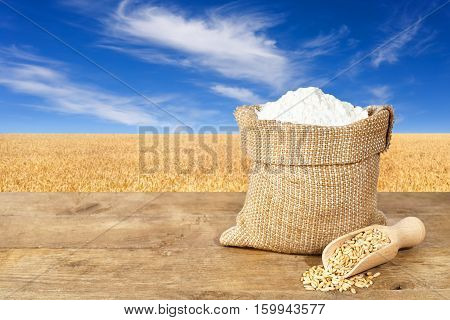 wheat flour in sack. Flour in bag on table with field of wheat on the background. Agriculture and harvest concept. Golden field and blue sky with clouds. Photo with copy space area for a text