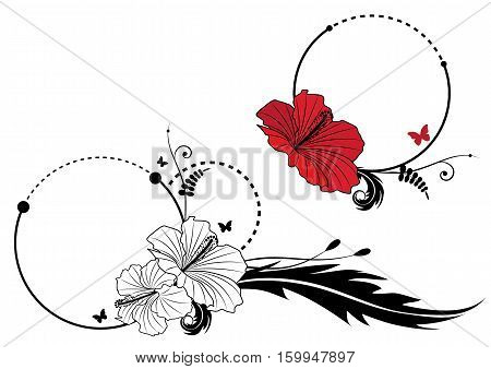 set of vector frame with hibiscus and butterflies