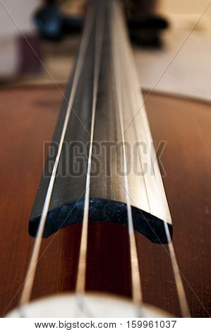 The string of cello. Close up shot of cello music instrument. Classic music. Playing. Art.