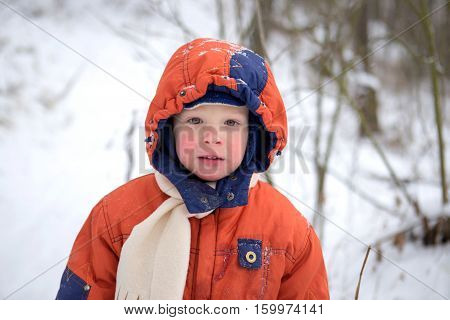Portrait of a boy 3 years old with red cheeks from the cold.