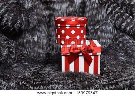 Christmas Present Box On Fur