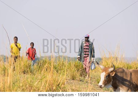 Ngoma, Namibia - August 16, 2016: Hard Rural Life In The African Savannah. Young And Adult Shepherds