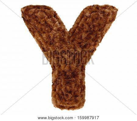 3D Bushy Bear Fur Alphabet Capital Letter Y