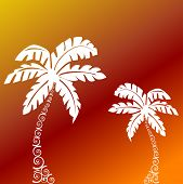 palm trees with funky tree trunks vector poster