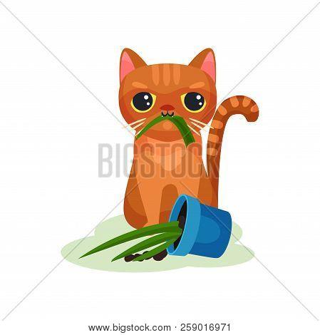 Naughty kitten eating house plant, mischievous cute little cat vector Illustration on a white background poster