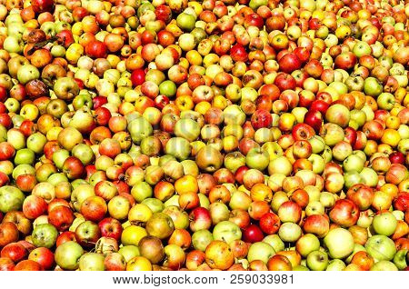 Hesse, Germany - Apples Background - Rich Apple Harvest For Cider And Apple Juice.