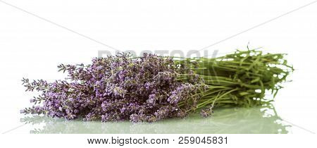 Bouquet Of Freshly Lavender Isolated On White Background