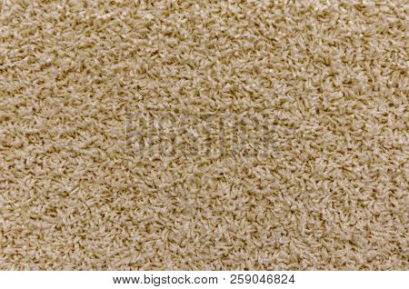 Close-up of the light brown carpet texture background in the meeting room