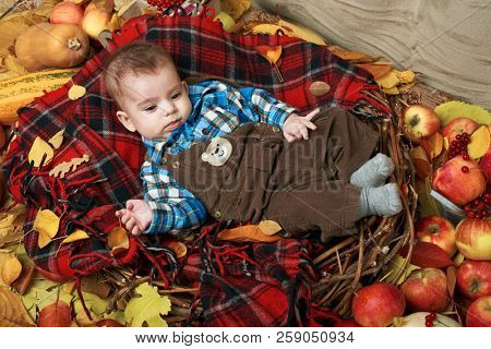 autumn concept - child boy lie on yellow leaves with fruits and vegatbles, red apples and pumpkins