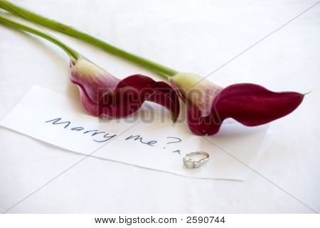 Marriage Proposal With Flowers