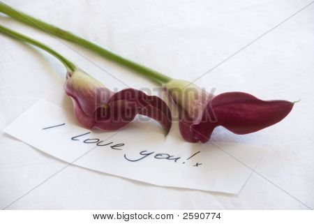 Stunning Pinky Red Lillies With A Handwritten Love Note