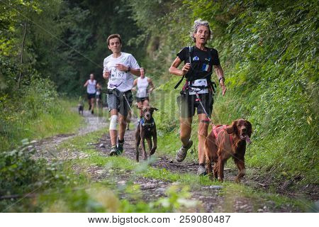 France, Saint Colomban Des Villards. August, 2015: Competitors Running With Dogs On The Forest Path