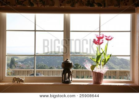 a kitchen window with a spectacular view