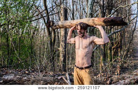 Masculine Leisure. Man Beaded Brutal Sexy Lumberjack Carry Big Heavy Log. Lumberjack Or Woodman Sexy