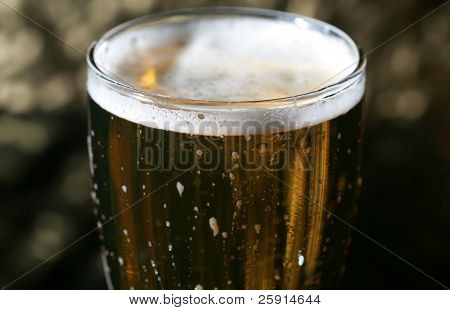 beer in a beer glass
