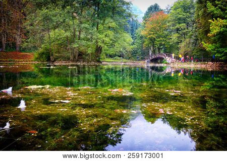 Beautiful forest landscape . Bosnia and Herzegovina, public park Vrelo Bosne, near Sarajevo, river Bosna