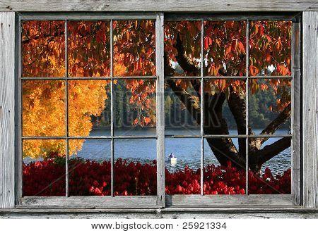 Autumn,Seattle's Lake Washington Blvd. #5
