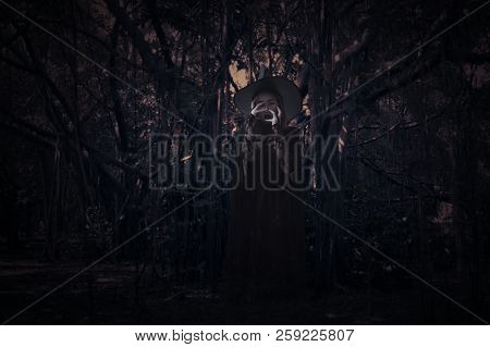 Scary Witch Over Spooky Dark Forest With Tree, Leaves And Vine, Halloween Mystery Concept