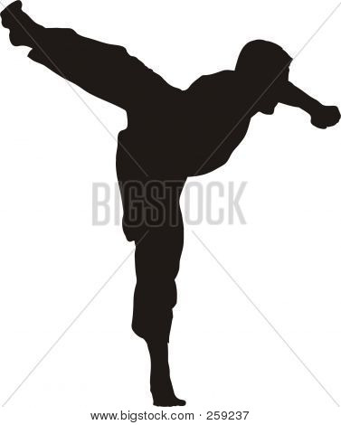 Kicking Karate Fighter Silhouette
