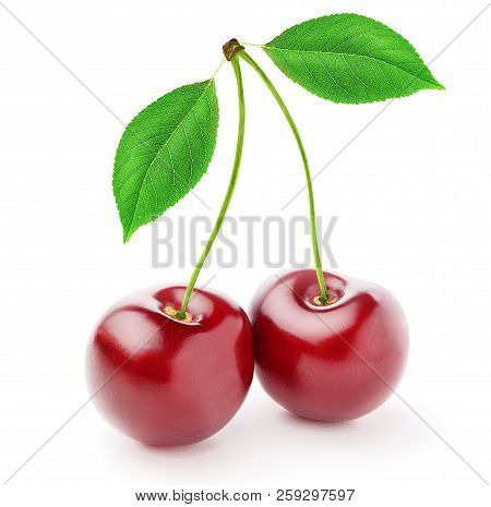 Cherry. Isolated cherries. Two sweet cherries with leaves isolated on white background. With clipping path