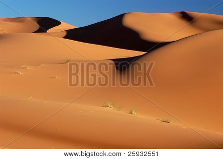 Sand dunes of Erg Chebbi in the Sahara Desert, Morocco.
