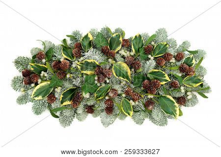 Natural winter flora decoration with snow covered pine, ivy leaf sprigs, mistletoe and pine cones isolated on white background.