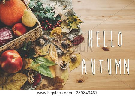 Hello Autumn Text. Hello Fall Sign On  Pumpkin And Vegetables In Basket And Colorful Leaves With Aco