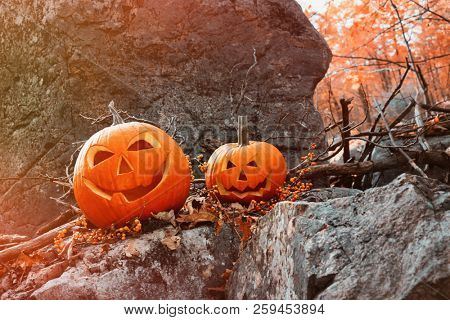 Funny pumpkins on rocks with leaves