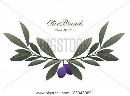 Olive Branch Wreath Isolated. Mediterranean Symbol. Vector Illustration