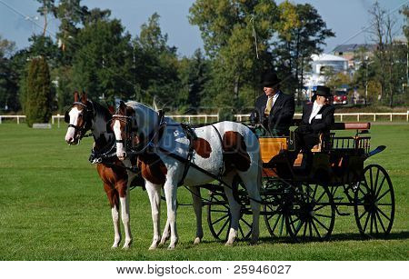 Two Horse carriage with two coachmen