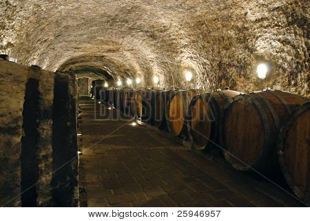 Old wine cellar with barrels and path