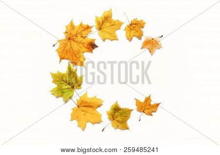 Fall background. Fall composition made of seasonal fall leaves on the white background with free space for text. Fall still life. Fall leaves on the white surface