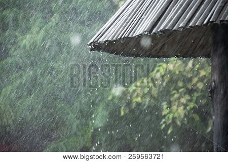 The Rainy Season In The Tropics With Rain Droplets. The Rain Drops From The Roof Of Bamboo