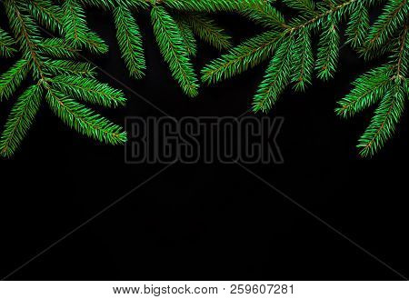 Beautiful Nature Background With Fresh Fir Tree Branches. Spruce Branches Isolated On Black Backgrou