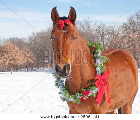 Red bay horse wearing a Christmas wreath and a bow, against sunny winter background poster