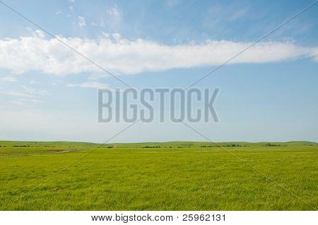 Wide open rural prairie landscape in summer