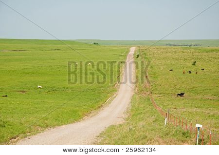 Dirt road and a fence splitting a wide open prairie landscape on a hazy summer day