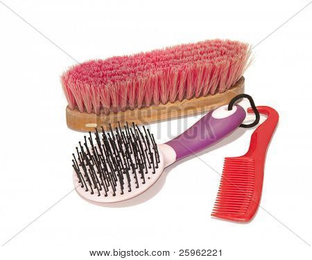Horse grooming supplies - a soft brush, a mane and tail brush and a comb-hoof pick combo