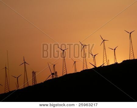 Group of wind turbines on sunset