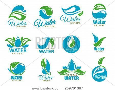 Natural Water Symbols With Clean Aqua Drops And Bio Green Leaves. Eco Nature Resource Isolated Vecto