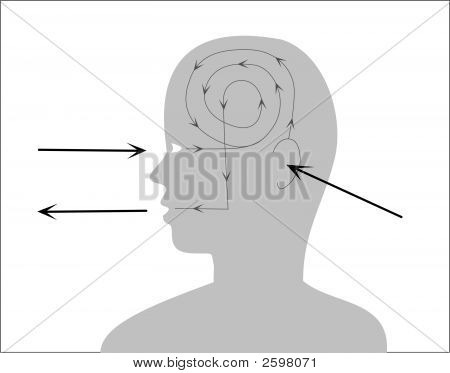 Proces Of Perception And Reaction.Eps