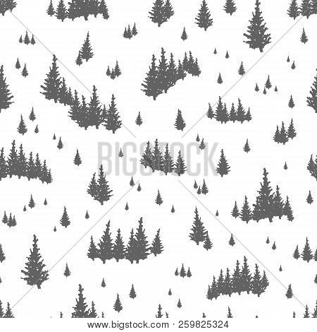 Seamless Pattern With Silhouettes Of Coniferous Trees. Backdrop With Evergreen Forest, Fir Woods Or